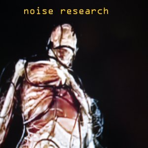 noise research new logo for survey 0008